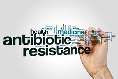 Résistance à la pénicilline : comment le savoir ?