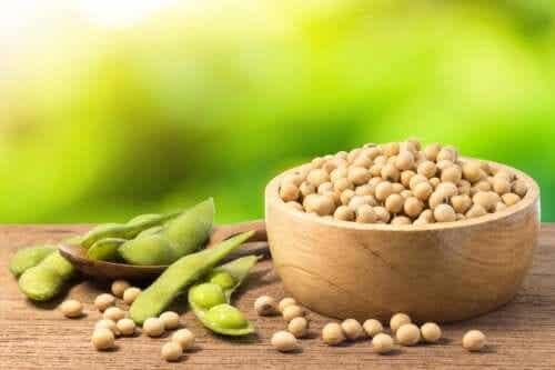 Soja vert : propriétés, usages et bénéfices