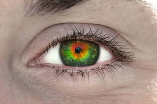Qu'est-ce que le tétrachromatisme, et qu'est-ce que cela signifie ?