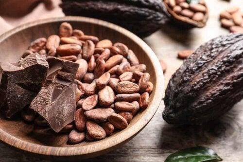 Fèves de cacao et chocolat noir.