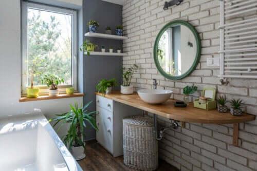 7 idées pour décorer la salle de bains avec des plantes