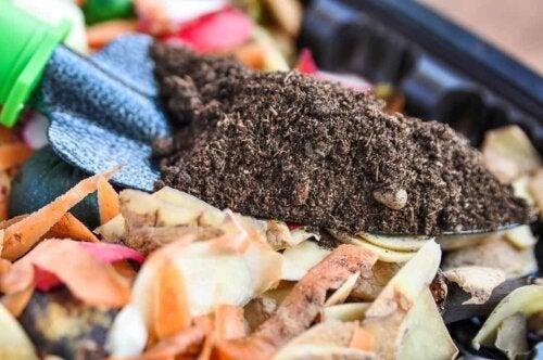 Une petite pelle de compost maison.