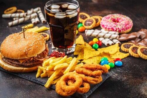 Assortiment d'aliments à haute appétence.