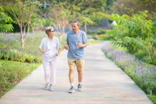 Programme d'exercice recommandé pour les personnes âgées