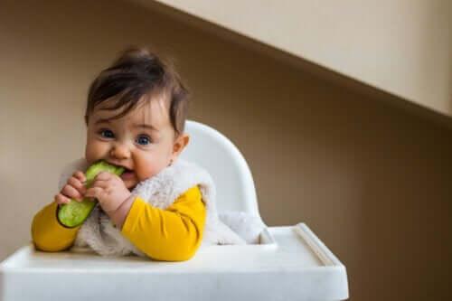 Quand et comment ajouter du concombre dans l'alimentation du bébé ?