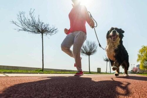 Courir avec son chien.