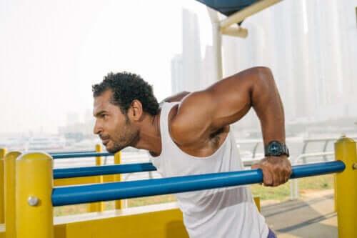 Les dips pour les triceps : caractéristiques et variations de la routine
