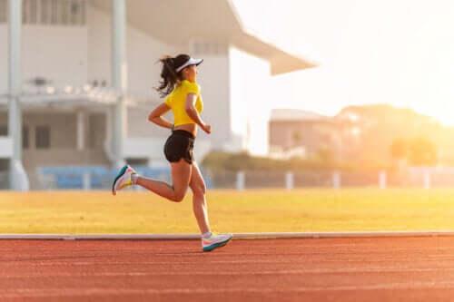 Programme d'entraînement sur piste pour les coureurs