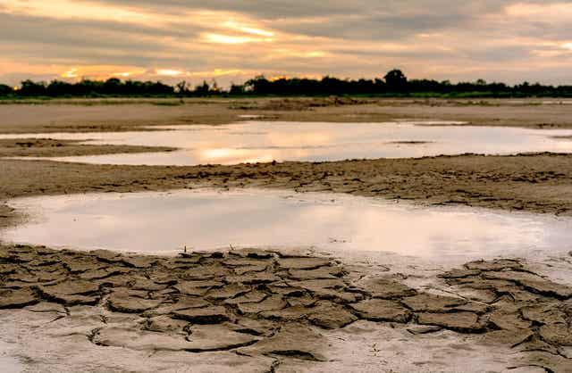 La sécheresse du sol.