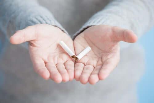 Qu'est-ce que le nœud cannabis-tabac et comment le rompre ?