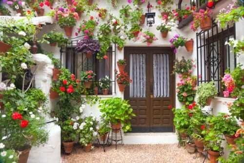 Comment décorer un patio au style andalou ?