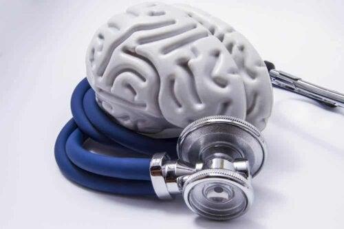Un cerveau en plastique.
