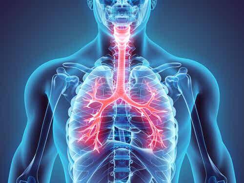 Journée mondiale de l'asthme : vous pouvez contrôler la maladie